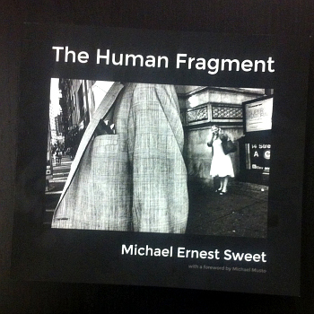 """""""The Human Fragment"""" by Michael Ernest Sweet (photograph by the author)"""