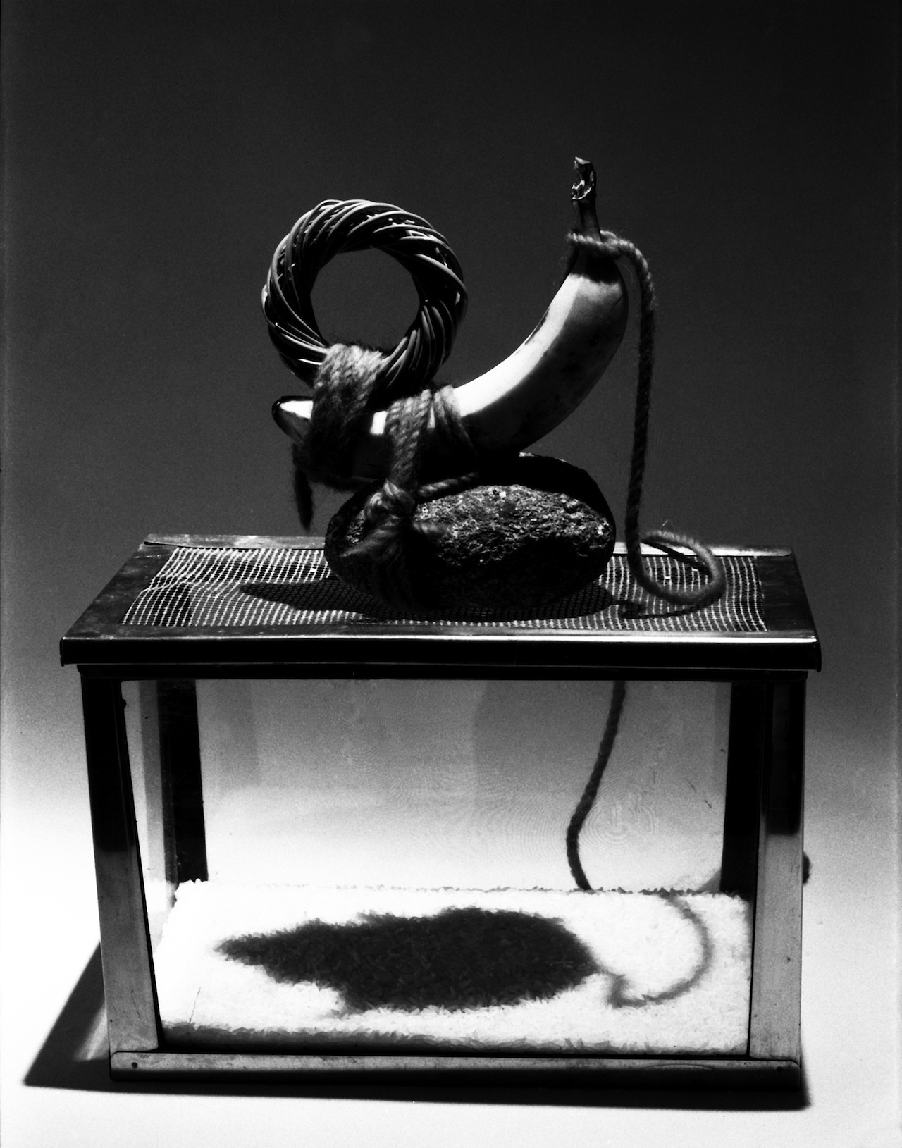 Mac Adams, Empty Spaces: Mouse, 1997, silver print. Courtesy of the artist.