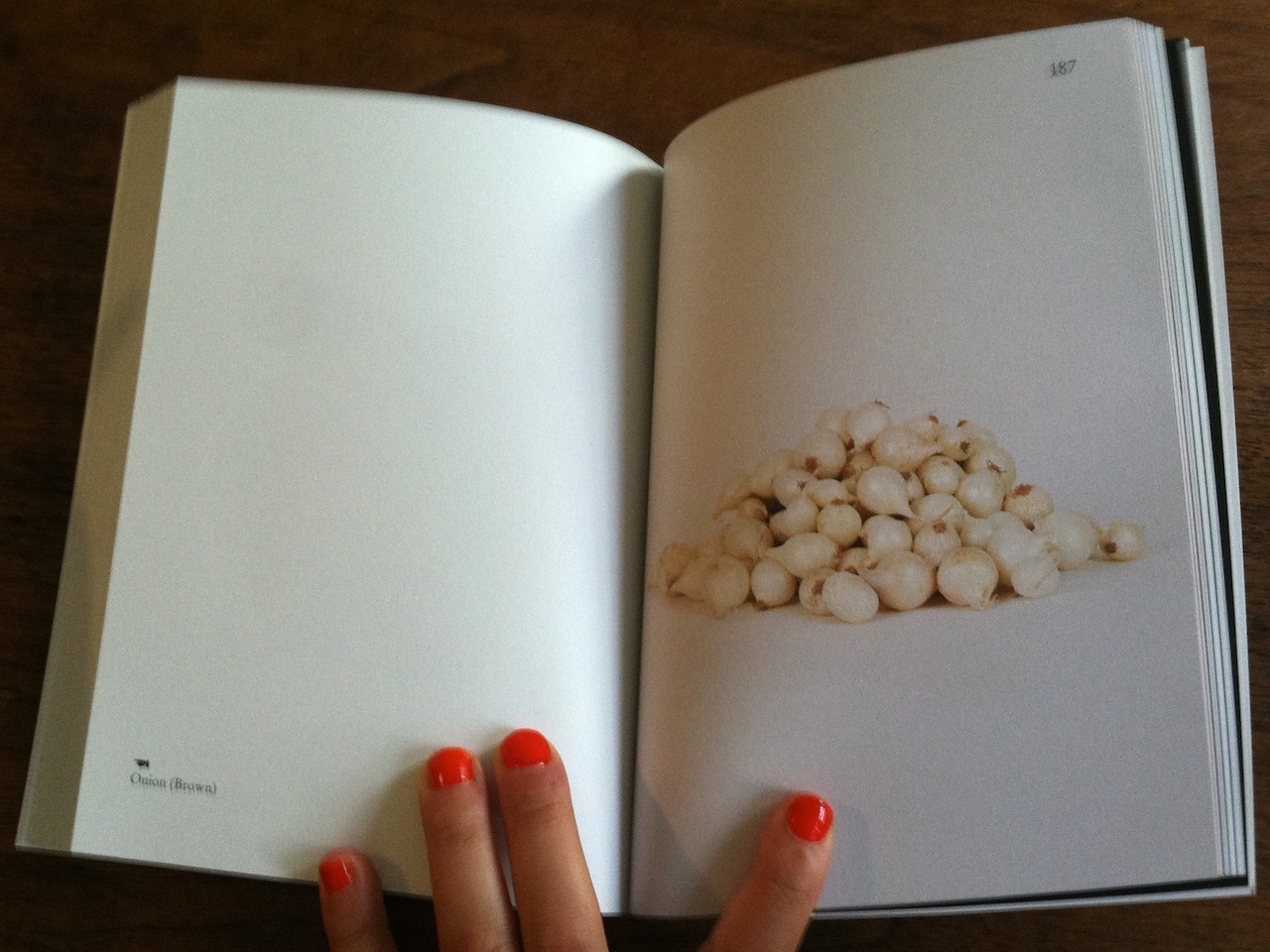 A spread from Elad Lassry's 'On Onions'