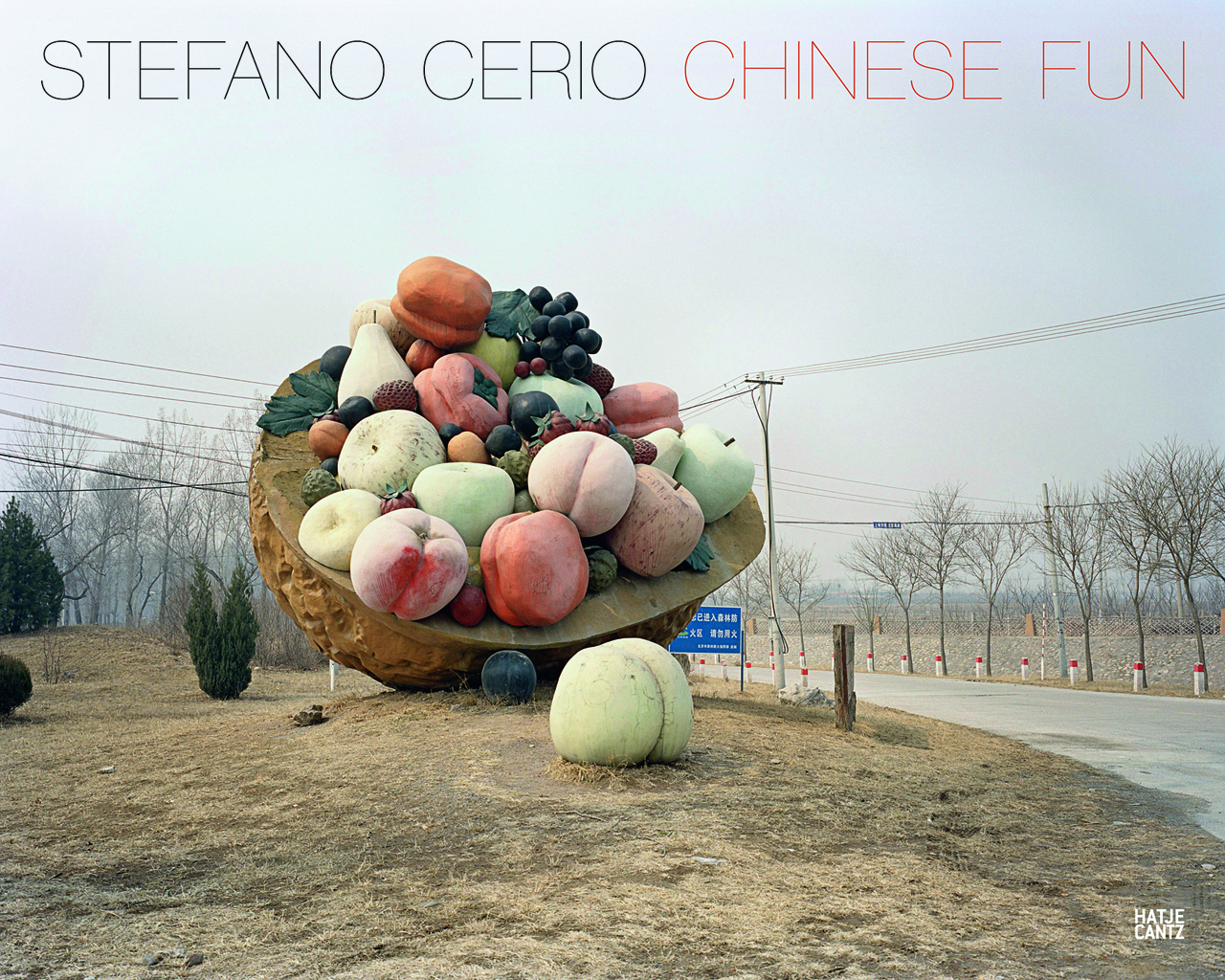 Cover of 'Stefano Cerio: Chinese Fun'