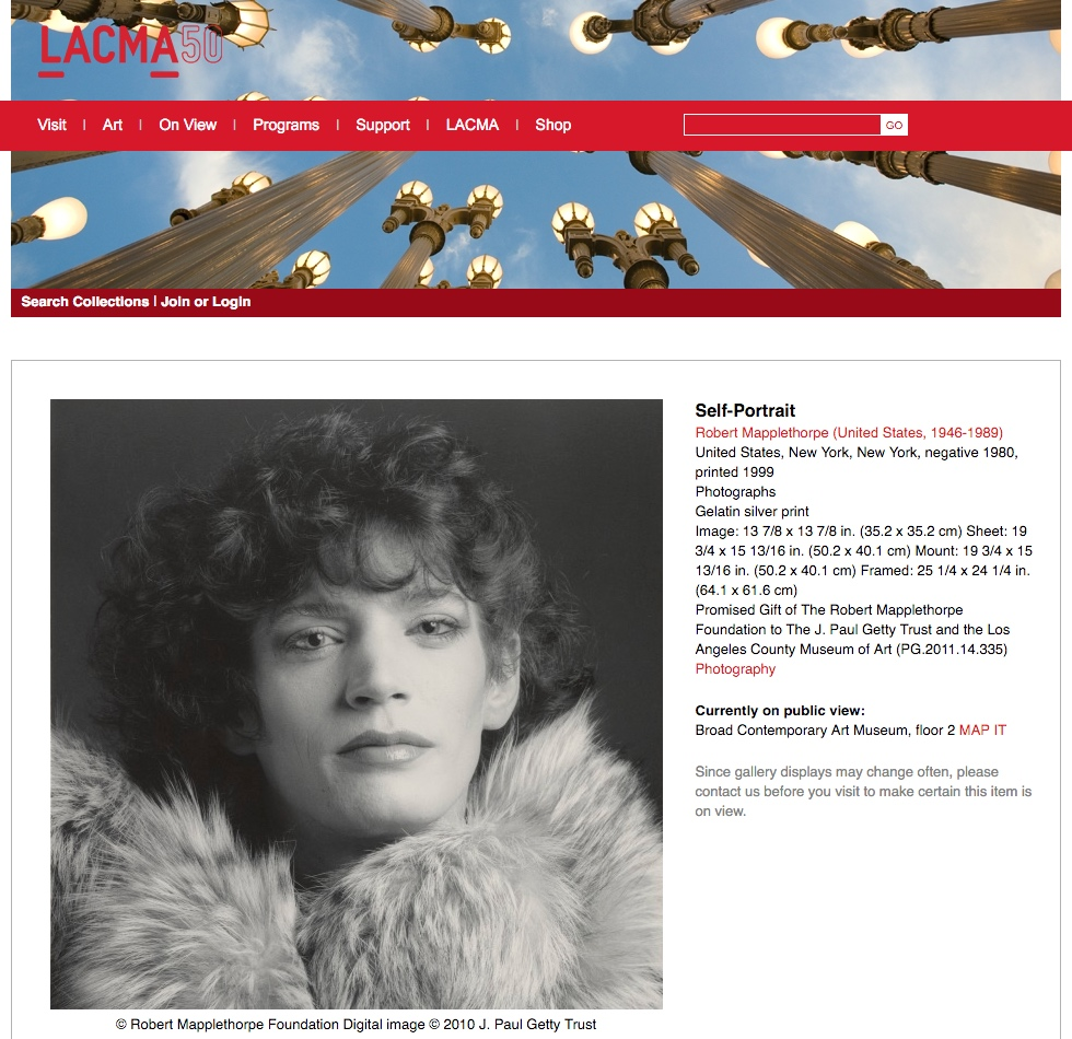 A portrait of Robert Mapplethorpe featured in the artist's current retrospective, which James R. Miller claims is his own work, not Mapplethorpe's. (screenshot by the author via lacma.org)