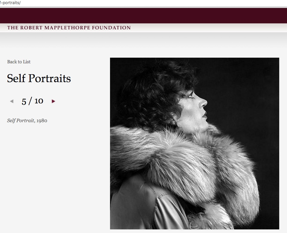 A portrait of Robert Mapplethorpe featured on the Robert Mapplethorpe Foundation's online portfolio, which James R. Miller claims is his own work, not Mapplethorpe's. (screenshot by the author via mapplethorpe.org)