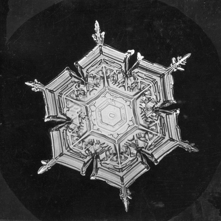 Snowflake study by Wilson Bentley (1890-1903) (via Smithsonian Institution Archives)