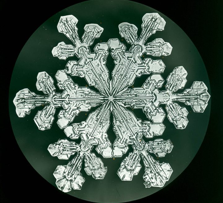 Snowflake photographed by Wilson Bentley (via Schwerdtfeger Library, Space Science and Engineering Center, University of Wisconsin-Madison)