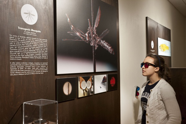 """Installation view of the Center for PostNatural History in """"Intimate Science"""""""