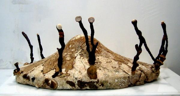 """Philip Ross, """"Pure Culture: Ganoderma lucidum fungus"""""""