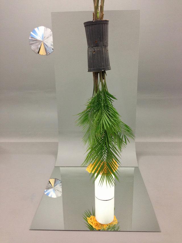 "Corey Escoto, ""Lagniappe"" (2012) and ""Set Piece: Houseplants Reflection"" (2012)"