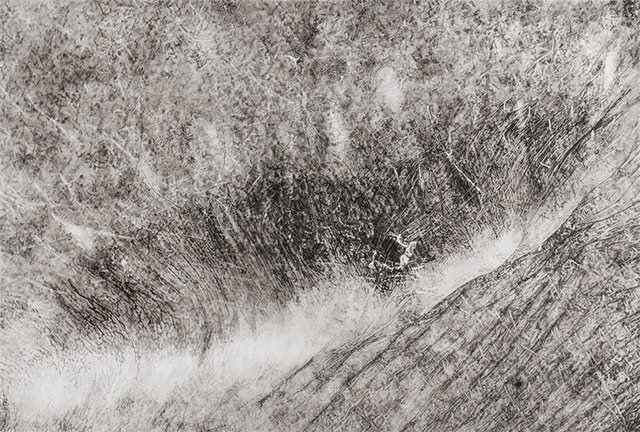 """Cynthia Lin, """"CropB32910W firescar"""" (2010), ink on mylar, 50 x 34 in (all images courtesy Garis & Hahn)"""