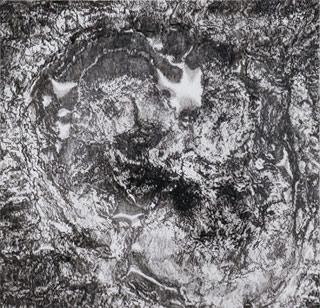 "Cynthia Lin, ""Crop5NBurn71409"" (2010), ink on mylar, 38.7 x 40 in (click to enlarge)"