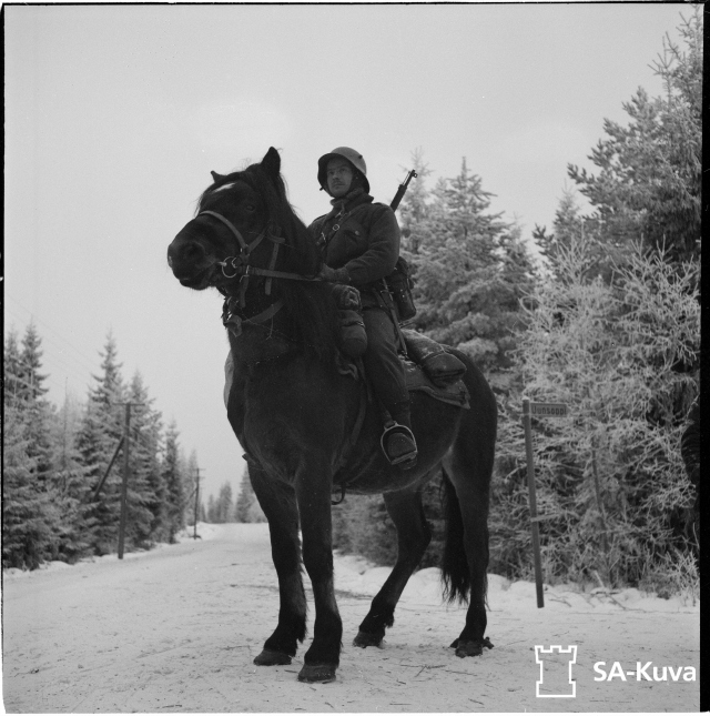 Cavalry soldier in winter.