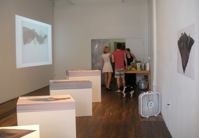 """""""Rick Silva: En Plein Air"""" at Transfer gallery, installation view (all photos by the author for Hyperallergic)"""