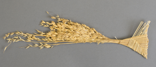 A basketry artifact collected by Norman B. Tindale in North West South Australia in 1966.