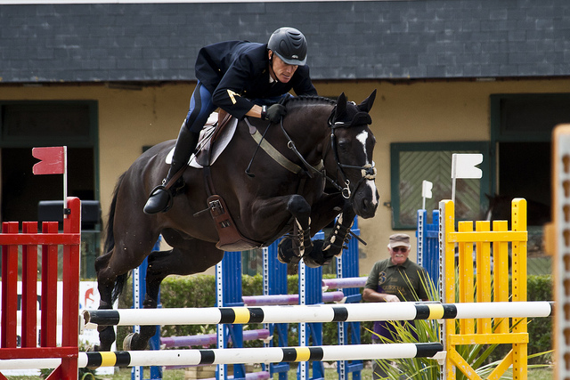 A member of the Cadre Noir in France, the elite of French practitioners of equitation (photograph by Matthieu Luna)