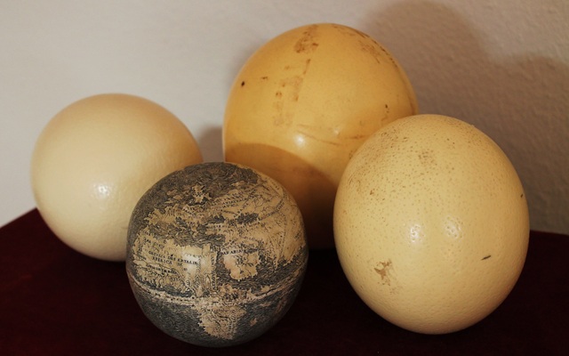 Ostrich Egg Globe with other ostrich eggs (courtesy Washington Map Society)