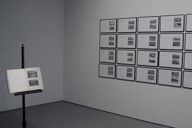 """Pablo Helguera, """"Rogaland"""" (2012), Sixty-five framed prints. 4' 2"""" x 27' 33"""" overall."""