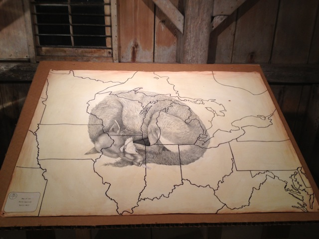 """Wolf drawing, an installation in Deke Weaver's """"The Unreliable Bestiary"""" (2013). Image courtesy of the author for Hyperallergic."""