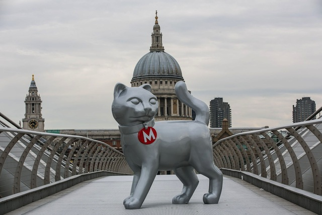 (image via cattipper.com)