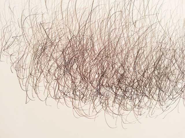 """Joanne Aono, """"Hashi Bridge"""" (detail) (2013), graphite on incised clayboard, 8"""" x 48"""""""