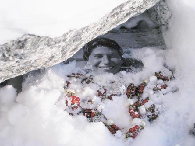 Detail, North Pole, Photographic Installation 2009