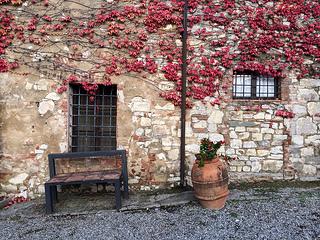 The textures of Castello di Ama