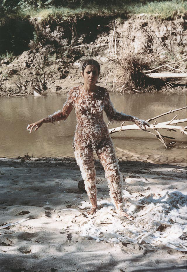 ANA MENDIETA_Untitled Blood and Feathers