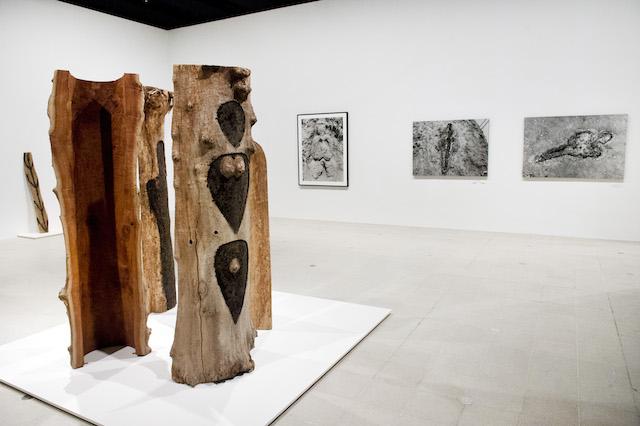 Ana Mendieta's Totem Series