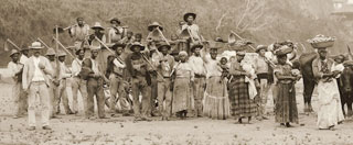 """Enlargement and detail of """"Departure for the coffee harvest by ox cart, Vale do Paraíba, Brazil, c. 1885"""" (click to enlarge)"""