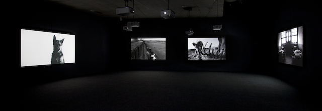 Yang Fudong: Estranged Paradise, Works 1993–2013 INstalltion at the Berkeley Art Museum,2013