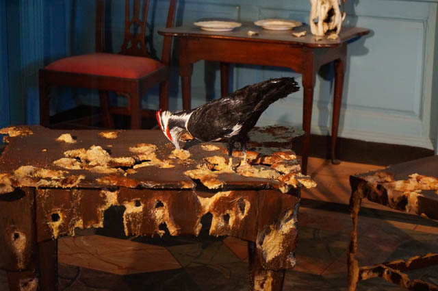 """Valerie Hegarty, """"Side Table with Pileated Woodpecker"""" and """"Chairs"""" (both 2013)"""