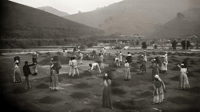 Slaves in the yard of a coffee farm | Vale do Paraíba, c. 1882