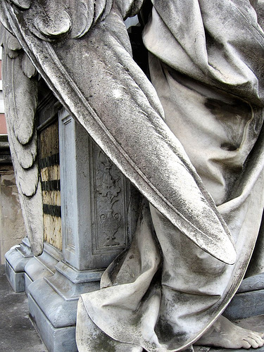 Wings of a stone angel (photograph by the author)