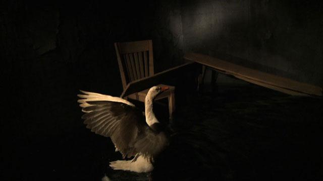 "Dana Levy, ""Aftermath"" (2009), video, 6 min, collaboration with sculptor Sasha Serber, original soundtrack by Joni Rokotnitz"