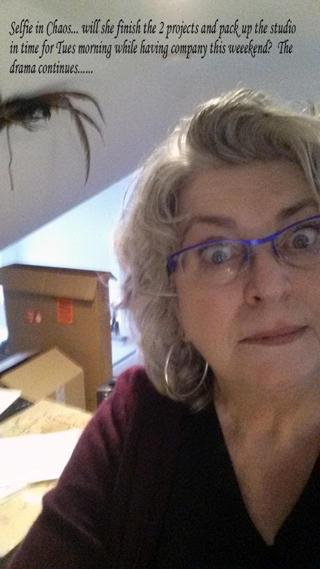 """Ann Tracy, """"Selfie in Chaos"""" (2014)"""
