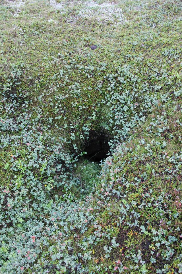 Iceland-Hole-640