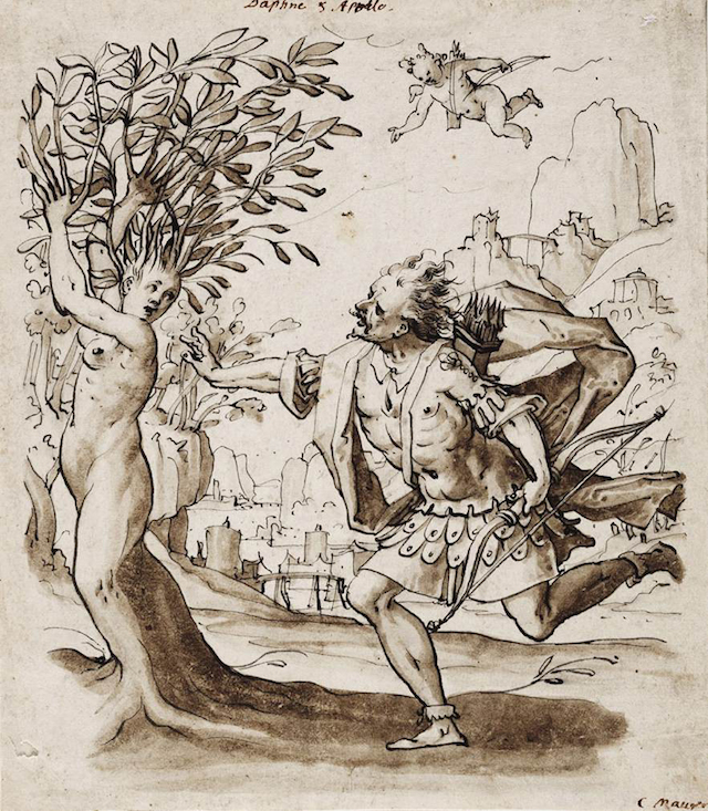 """Christoph Urer, """"Apollo and Daphne"""" (c.1580). Pen and black ink with brown washes on cream paper, 218 x 190 mm. Crocker Art Museum, Sacramento. (Image via Web Gallery of Art)"""