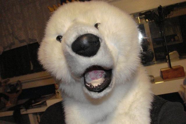 Bernadette's polar bear selfie