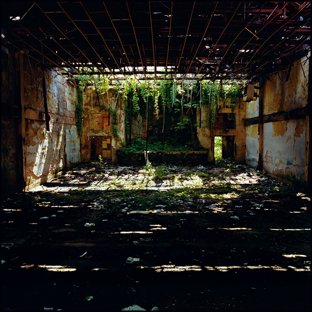 Rhona Bitner, New Roxy, Clarksdale, MS, May 9, 2008, 40 x 40 inches, color coupler print mounted on aluminum
