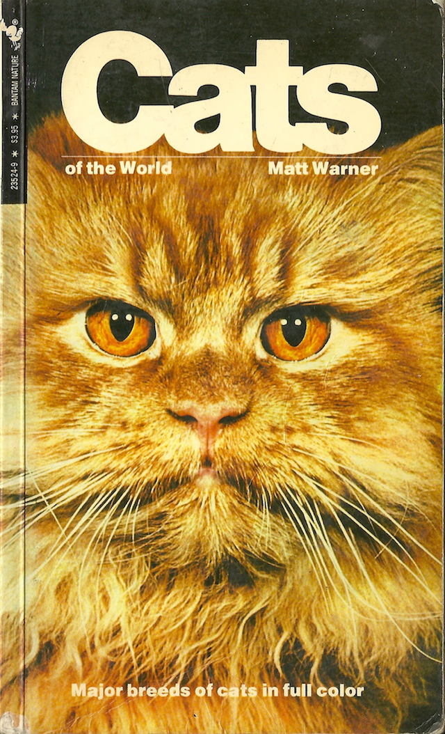 Cats of the World 6