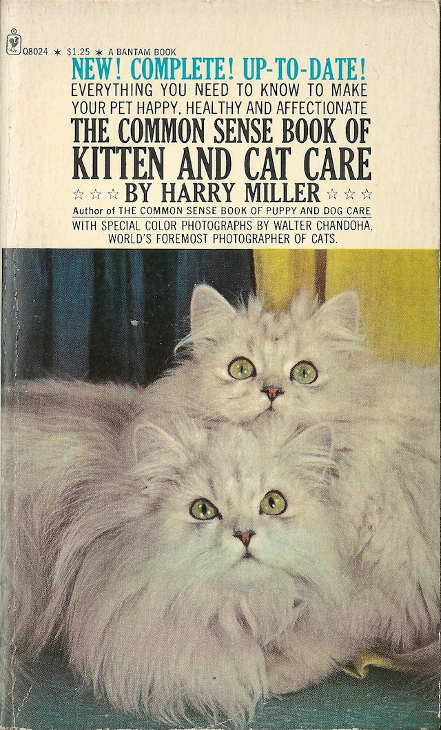 Harry Miller Kitten and Cat Care