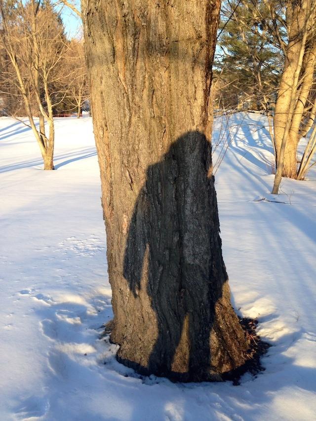 Mira Gerard's shadow selfie