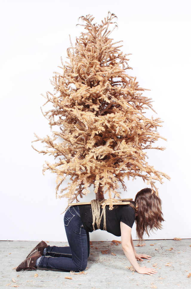 "Mary Ivy Martin, ""Tree Stand"" (2014) (photo courtesy of artists)"