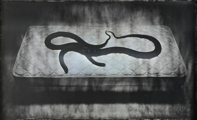"""Adam Fuss, """"The Space Between Garen and Eve"""" (2011), daguerreotype, 23 1/2 x 38 in. (courtesy Cheim & Read, New York)"""