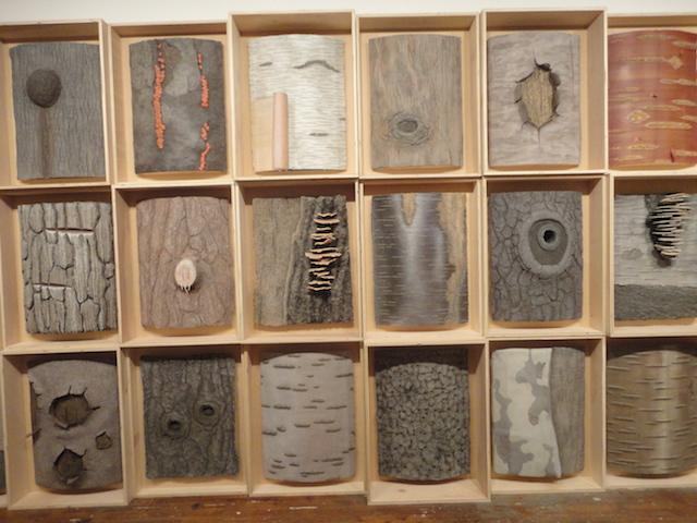 "Eric Lindveit, ""Sylvan Natural History of New York "" (2014)"