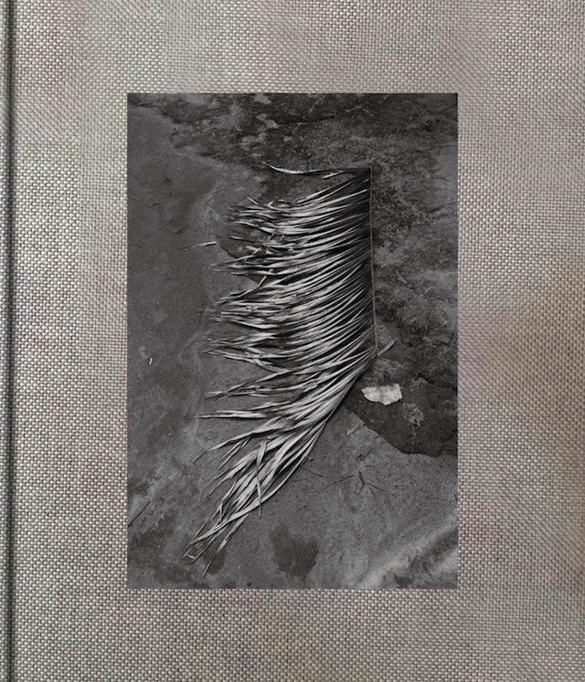 "Cover of ""Pikin Slee"" by Viviane Sassen"