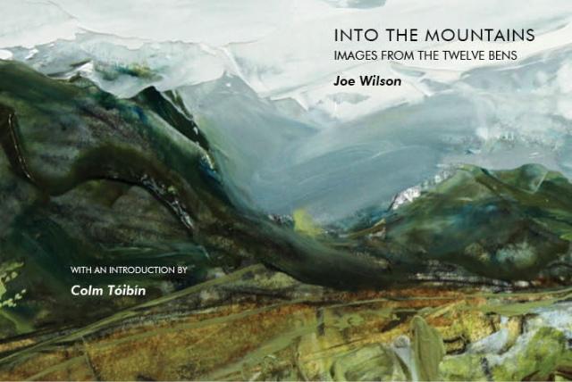 JOE WILSON  cover