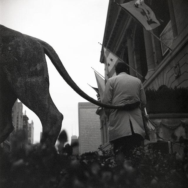 "Vivian Maier, ""Chicago (Art Institute of Chicago, Lion's Tail)"" (1973)"