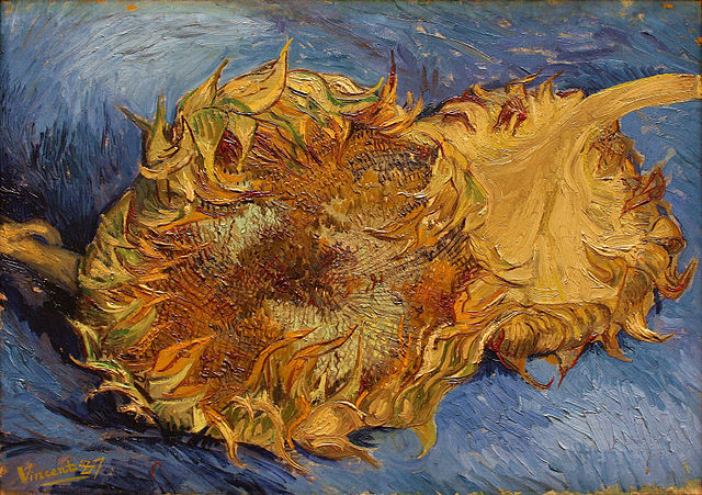 """Vincent van Gogh, """"Sunflowers"""" (1887), oil on canvas, one of the 17 paintings by the aritst held by the Metropolitan Museum of Art, which are on view together for the first time in a decade (via Metropolitan Museum of Art)"""