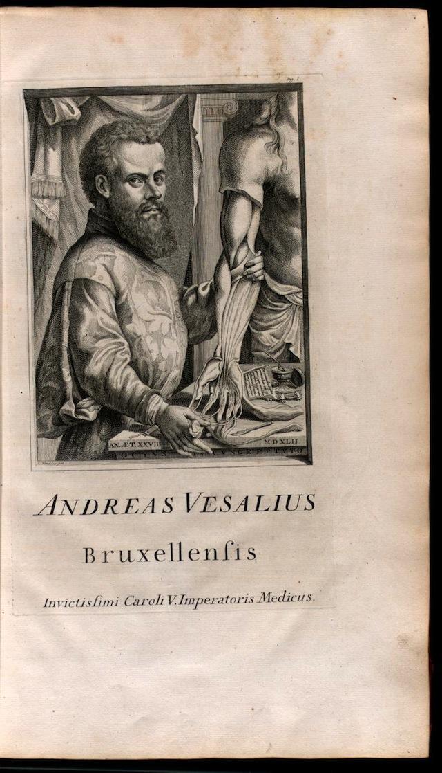 The Renaissance Anatomist Who Celebrated the Beauty of Flayed Flesh