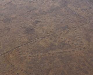 Geoglyph 2