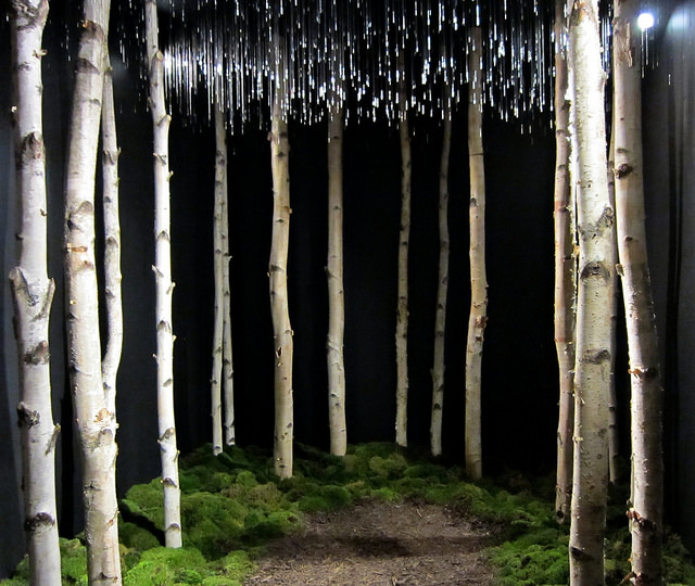 Installation by Chaney Trotter